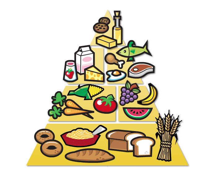parents ignore the food pyramid it s unhealthy healthy kids sydney rh healthykidssydney wordpress com  healthy food pyramid clipart